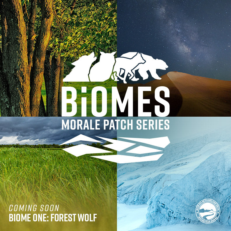 Biomes - morale patch series
