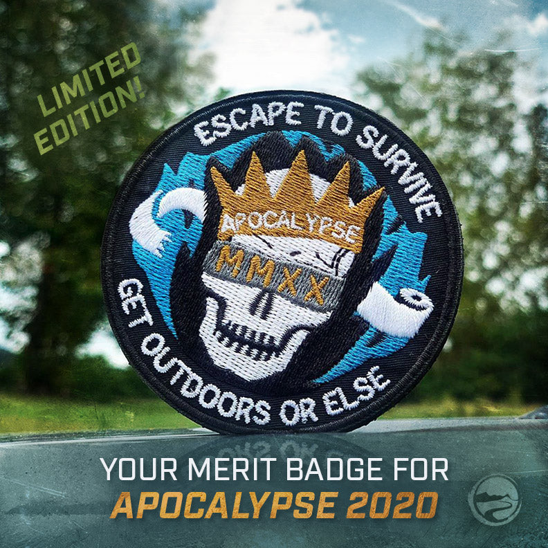 Apocalypse 2020 patch - a merit badge for keeping your sanity