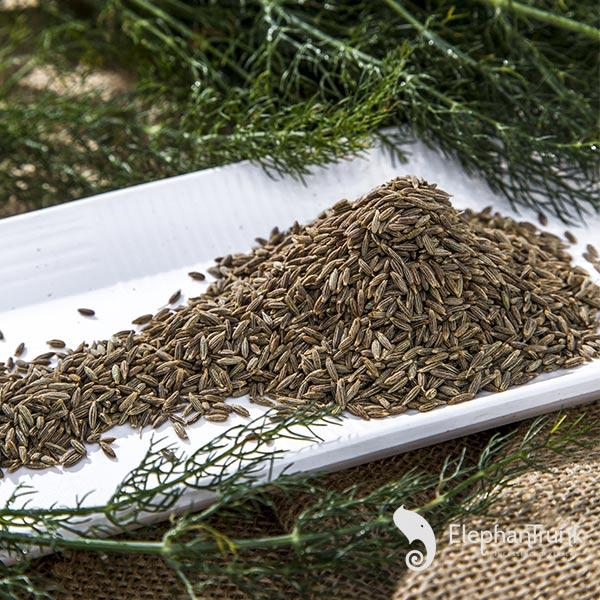 Fresh Cumin seeds (Jeera)