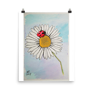 Lady Bug's Daisy