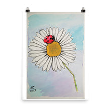 Load image into Gallery viewer, Lady Bug's Daisy