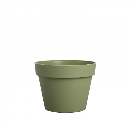 Brixton Pot - Small Olive