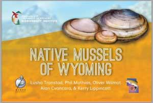 Native Mussels of Wyoming