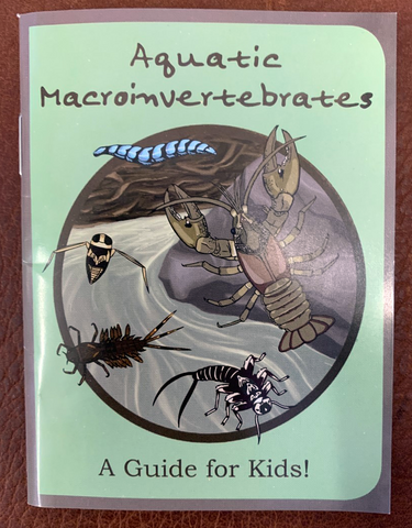 Aquatic Macroinvertebrates: A Guide for Kids!