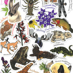 Wyoming Biodiversity Stickers! (Pack of 4)