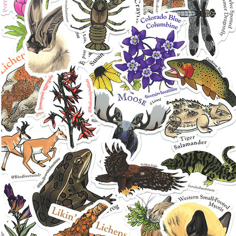 Wyoming Biodiversity Stickers! (Pack of 10)