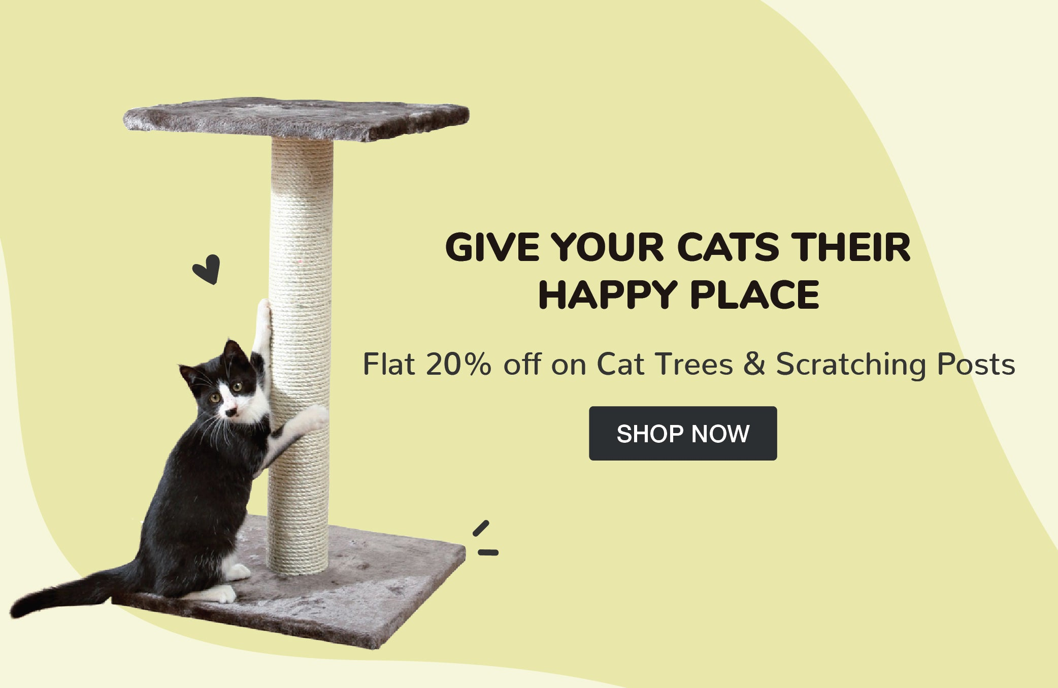 Cat Scratchers & Trees