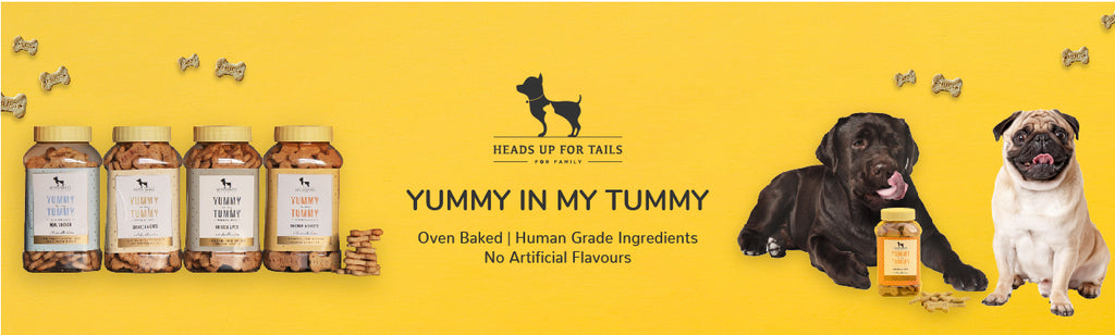 HUFT YIMT Apple and Cinnamon Vegetarian Dog Biscuits