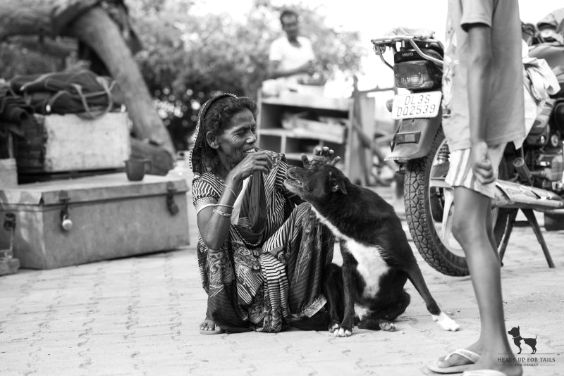 Old kind lady with street dog