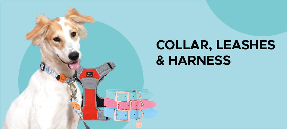 Collar Leashes Harnesses