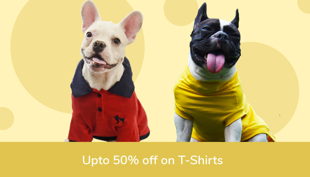 Dog T-shirts Offers