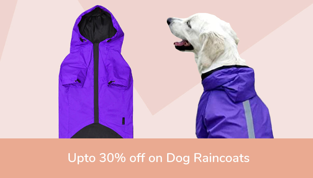 Dog Raincoat Offers