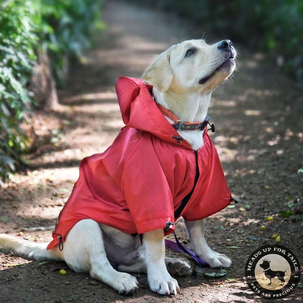 HUFT Rainy Day Dog Raincoat Red