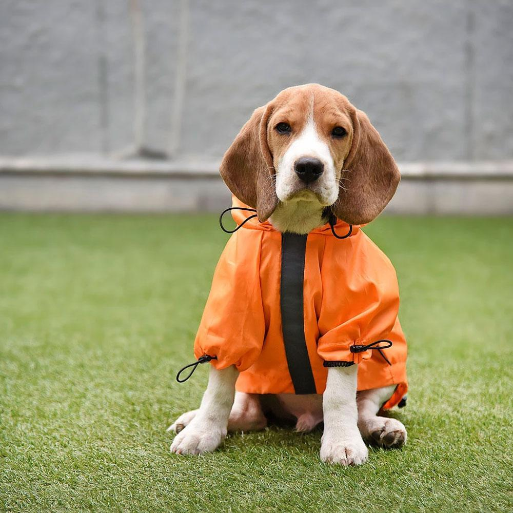 HUFT Orange Raincoat for Dogs