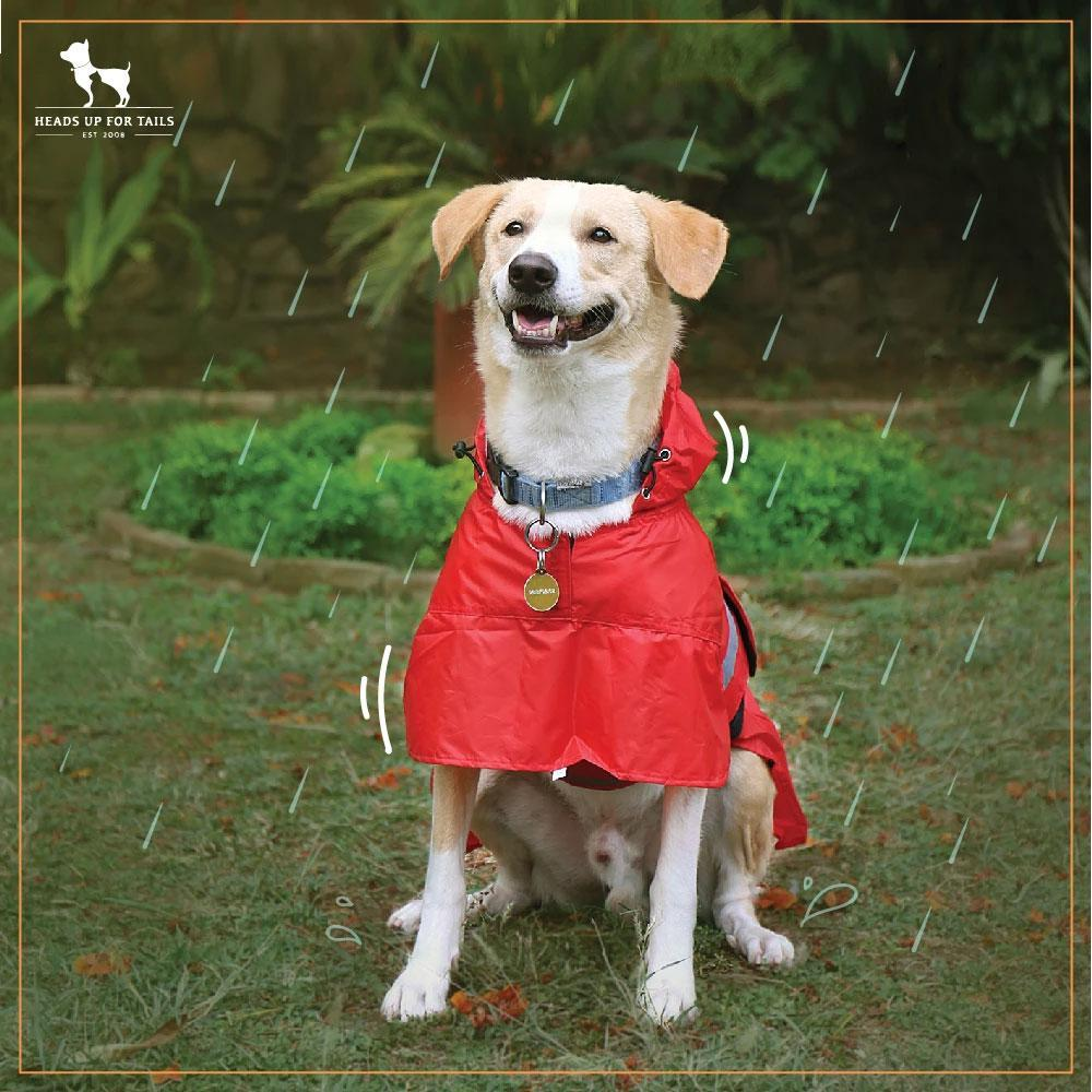 HUFT Pawring Raincoat Red