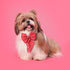 HUFT Sweetheart Dog Bow Tie