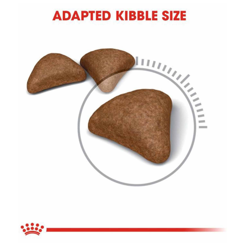 Trixie Ball on Rope Dog Toy Natural Rubber