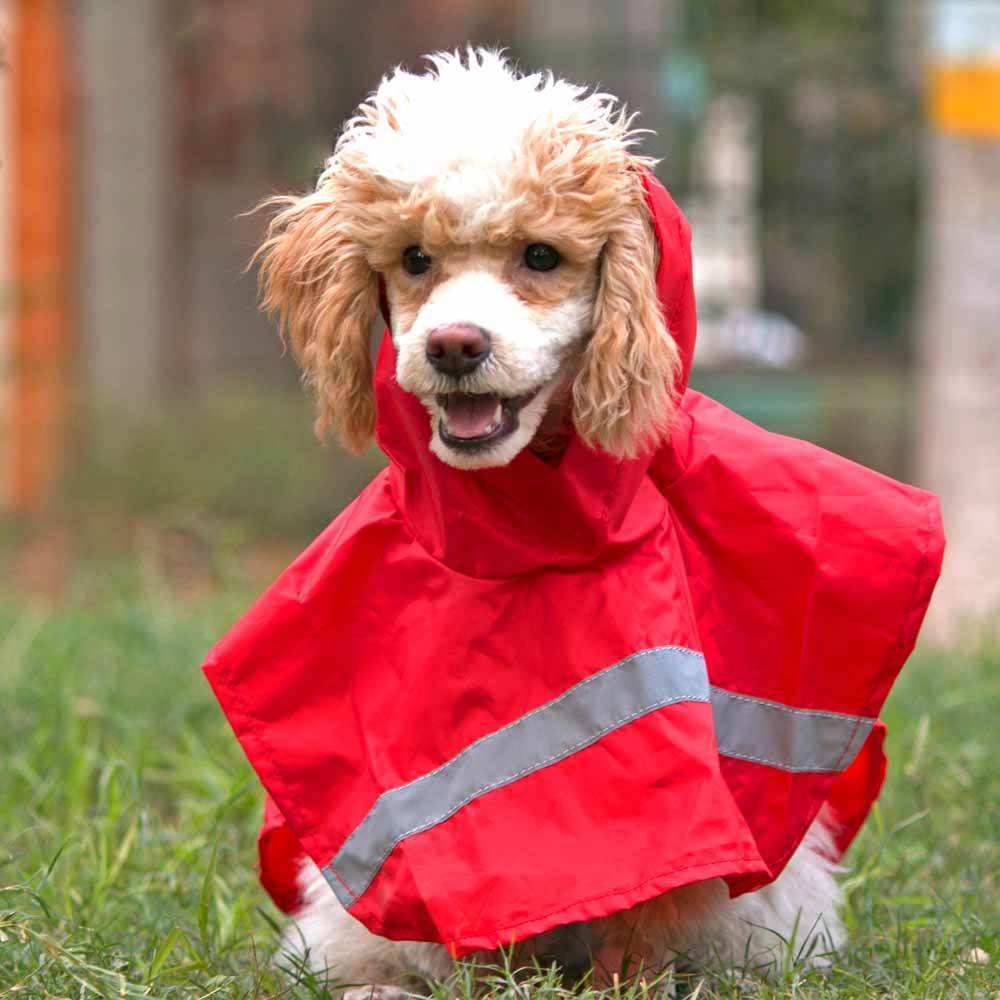 HUFT Red Raincoat for Dogs