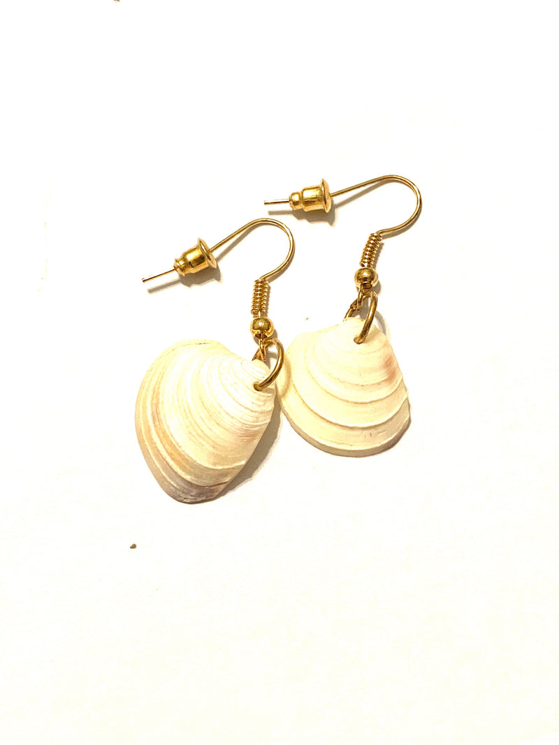 Seashell Dangling Earrings