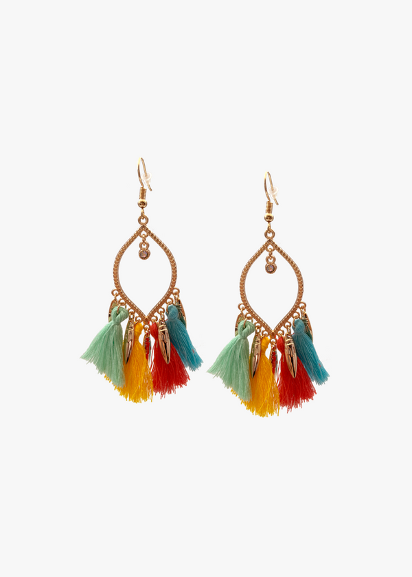 LONG MULTICOLOUR TASSEL EARRINGS
