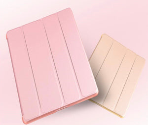 iPad Color Cases
