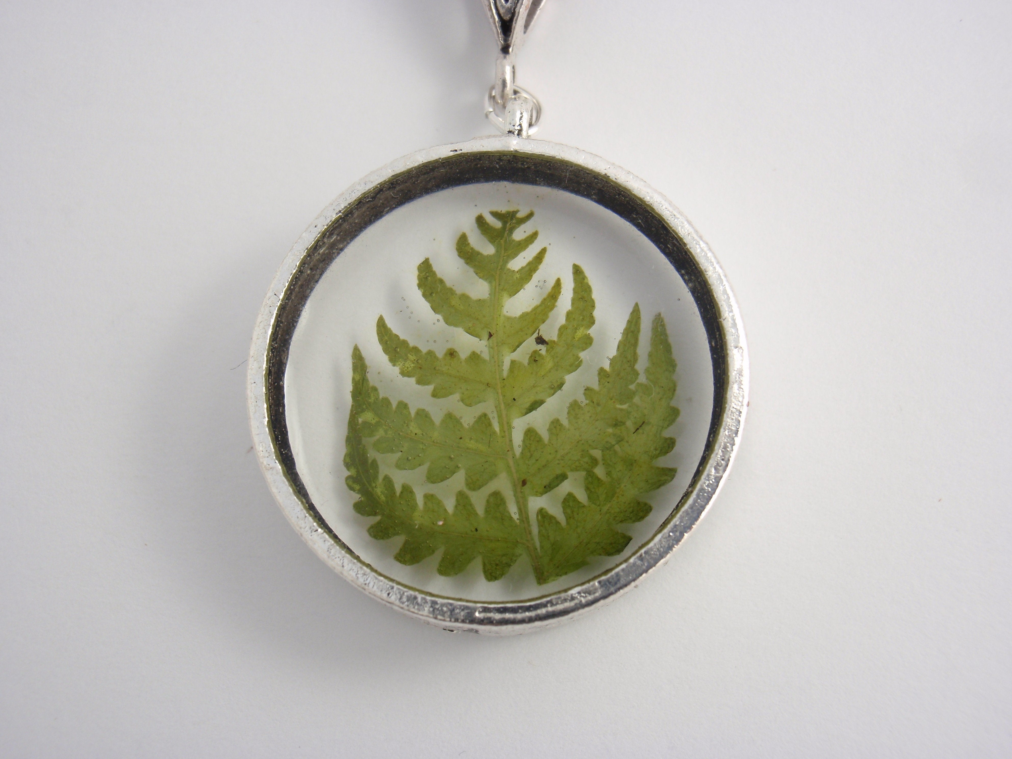 """Small Forest"" - real fern pendant on a silver plated necklace"