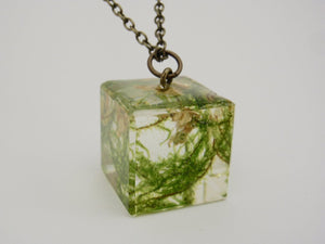 Cube real moss preserved in clear transarent eco-resin