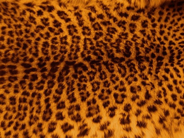 Leopard Print in Fashion