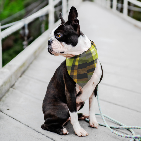 designer-dog-bandana-pet-stylish-style-love