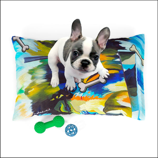 Osso Blu Pet Bed by Art Manifested