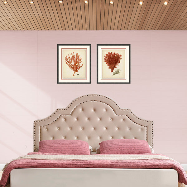 Alessandro Luxury Linen Upholstered Bedhead