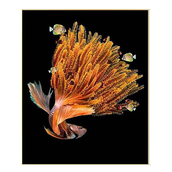 Silver Frame Hyperrealism Art Gold Siamese Fighting Fish