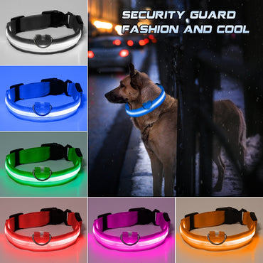 Pet Collar LED Light Night Safety Glowing Pet Supplies