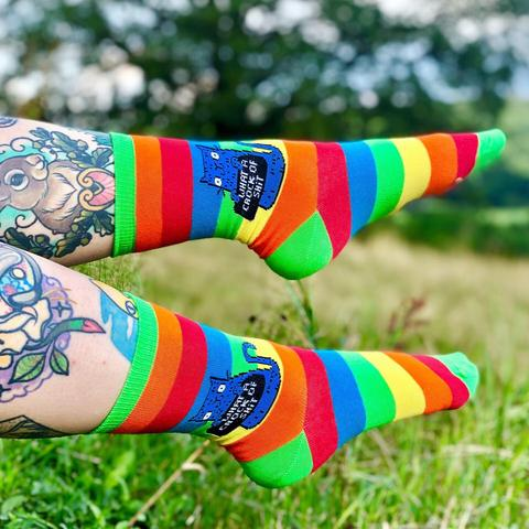 What A Crock Of Shit Rainbow Socks - Sweary Cat Socks - Blue Cat - Katie Abey Socks - Funny Socks