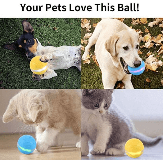 PETOMY™ Smart Pet Ball-Second improved version