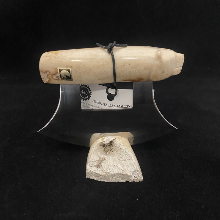 Fossil Walrus Jawbone Ulu - Bear Handle