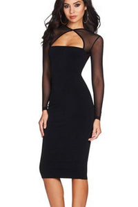 Plain  Long Sleeve Bodycon Dresses