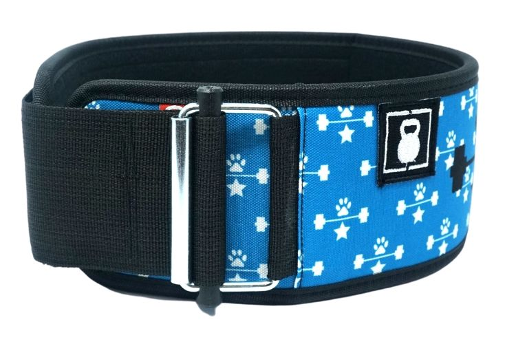 Blue Wags & Weights Straight Weightlifting Belt - 2POOD