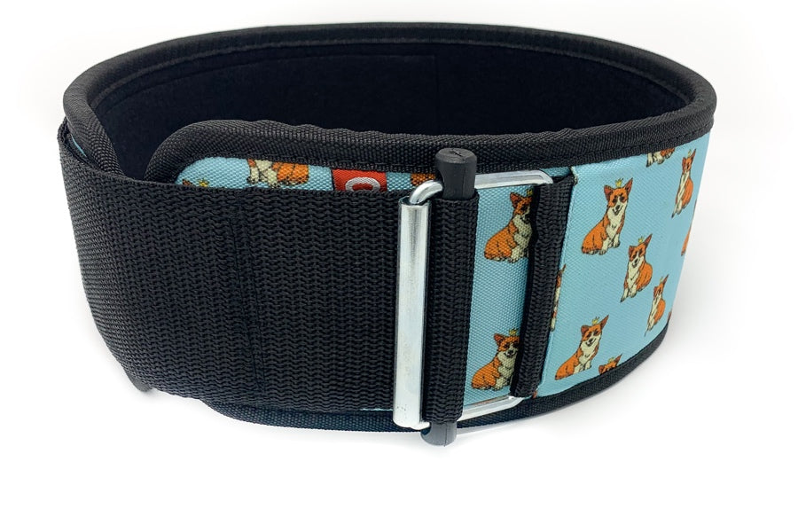 Winston the Corgi Straight Weightlifting Belt - 2POOD