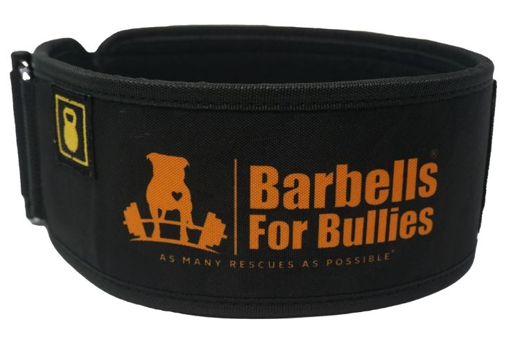 Barbells for Bullies Straight Weightlifting Belt - 2POOD