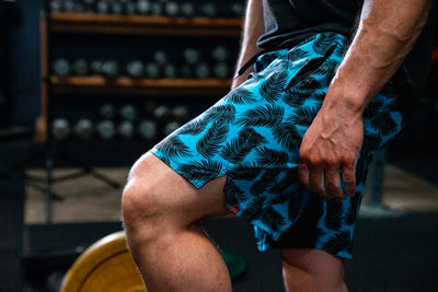 Summer Breeze 3.5 WOD Shorts