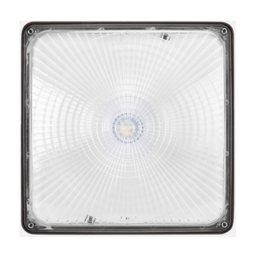 LED Canopy Light 40W 4000K Bronze Clear Lens Dimmable