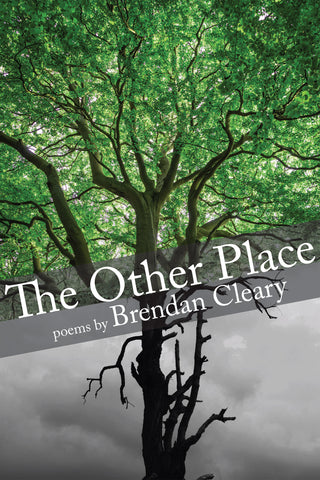 The Other Place by Brendan Cleary