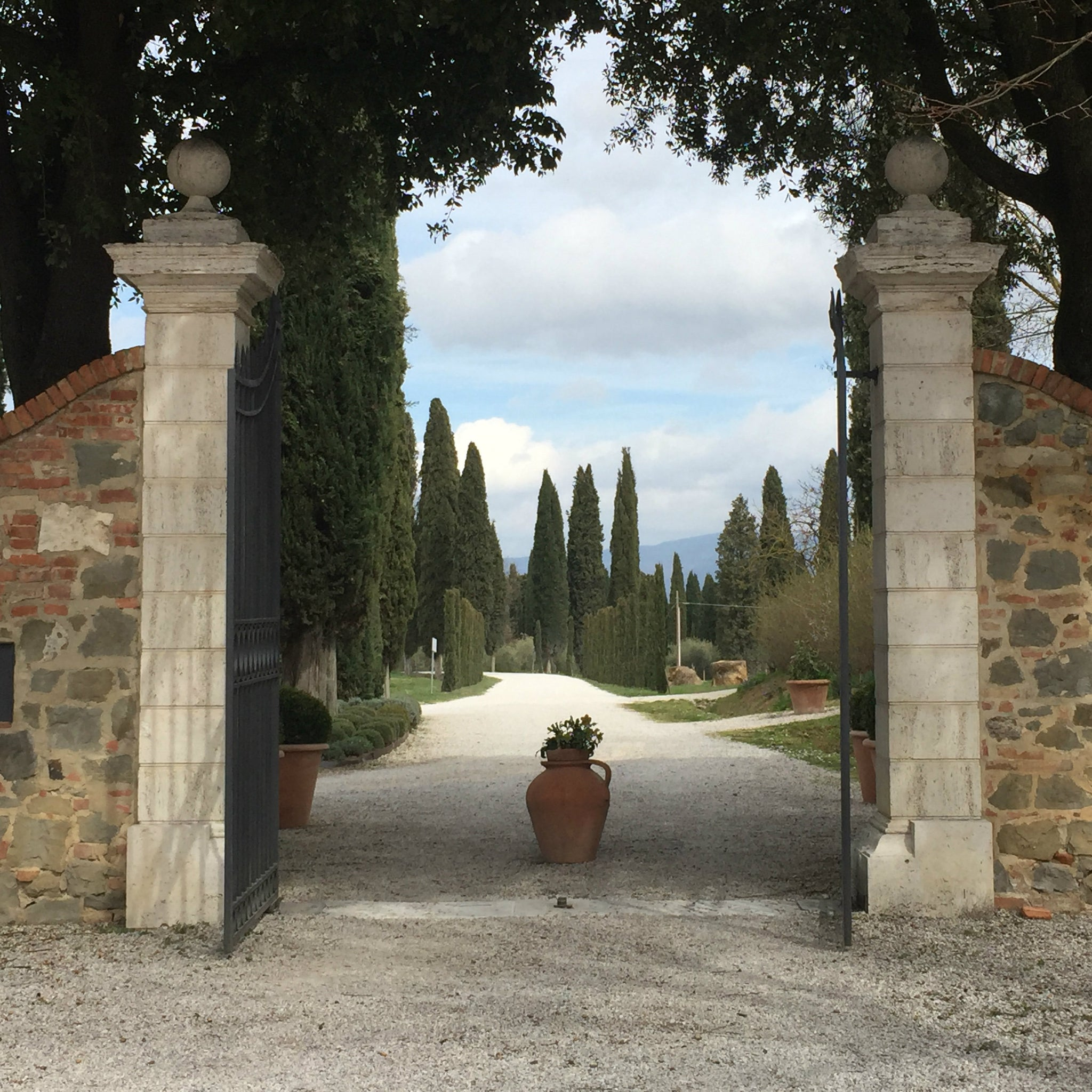 A Tuscan Afternoon At Avignonesi