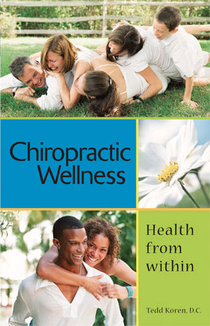 Chiropractic wellness health from within - B300