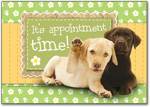 It's Appointment Time! Postcard