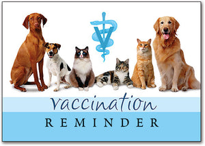Vaccination Reminder Postcard
