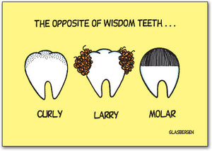 Opposite Of Wisdom Teeth Postcard