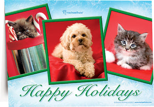 Holiday Puppy & Kittens Deluxe Folding Card
