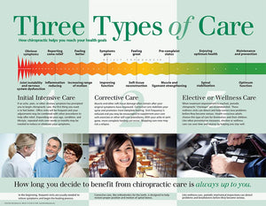 Three Types of Care Poster -  (Laminated)